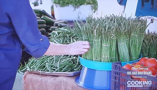 Picking asparagus