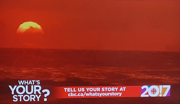 Whats your story cbc