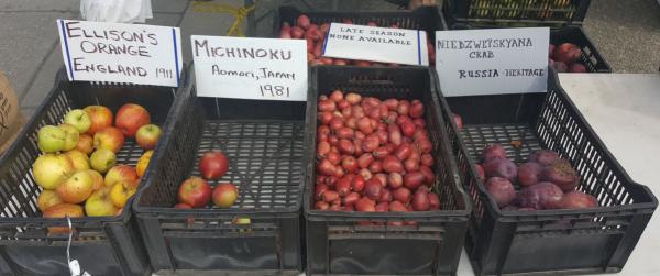 Victoria-farmers-market