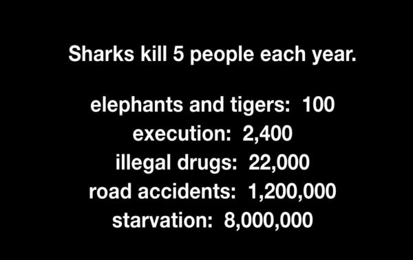 Sharkwater-stats